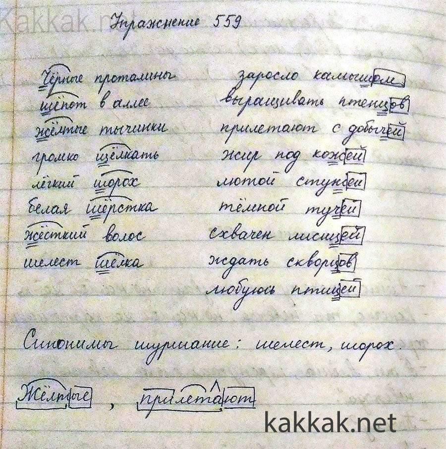 Домашка по русскому языку класс виленкин